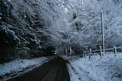Snow Road. Snowy road and snow on trees english countryside Royalty Free Stock Image