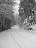 Snow road Stock Images