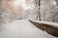 Snow road Royalty Free Stock Photos