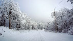 Snow Road - Armenia Winter. Snow Road - Winter in Halidzor, Syunik, Armenia. Near Tatev Monastery. Very white picture with trees covered with snow and a Royalty Free Stock Photography