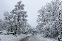 Snow on the Road. Just a hard for travel road in the winter stock photos