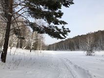 Snow road stock photography