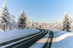 Snow road turn trees winter nobody Stock Image