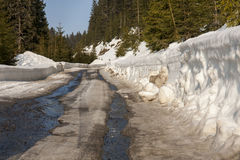 Snow road in winter through mountain. Forest Royalty Free Stock Image