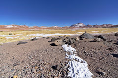 Snow and rocks in the banks of a salt lake. Snow and rocks in the banks of a salty lake Royalty Free Stock Photography