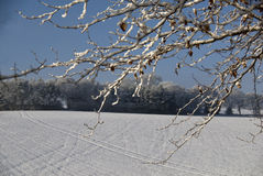 Snow in a rural location. Royalty Free Stock Photo