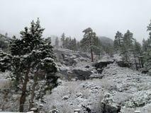 Snow in Sacramento California Royalty Free Stock Photo