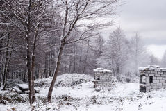 Snow in Sardinia Stock Photography