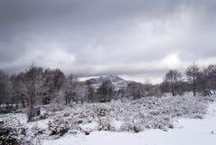 Snow in Sardinia Stock Photo