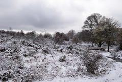 Snow in Sardinia Stock Images