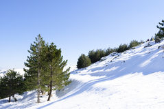 Snow in Sardinia Stock Photography