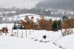 Snow scape in Elguea range (Spain) Stock Image