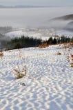 Snow scape in Elguea range (Spain). Snow scape in Elguea range, Alava (Spain Stock Photo