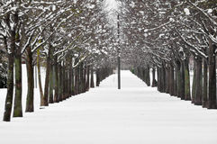 Snow scape in Vitoria (Spain) Stock Images