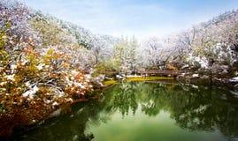 Snow scene Stock Photo