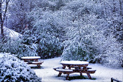 Snow scene. In park with tables Stock Photography