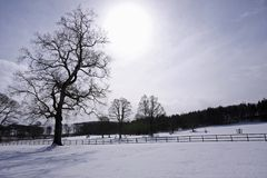 Snow scene in Aberdeenshire royalty free stock image