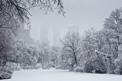Snow scene in Central Park Royalty Free Stock Images