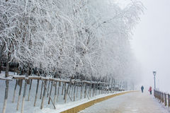 Snow scene Dense fog Rime Songhua River Royalty Free Stock Photos