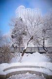 Snow scene Dense fog Rime Songhua River royalty free stock photos