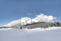 Snow scene panorama Royalty Free Stock Photos