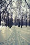 Snow scene winter Stock Photography