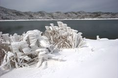 The snow scenery. Near the lake is pure stock images