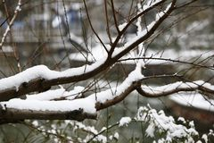 Snow Scenery in Zhengzhou People& x27;s Park. Zhengzhou People& x27;s Park is located on the west side of North 27th Road in the urban center. It was established royalty free stock images