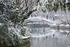 Snow Scenery in Zhengzhou People's Park. Zhengzhou People's Park is located on the west side of North 27th Road in the urban center. It was established royalty free stock photo