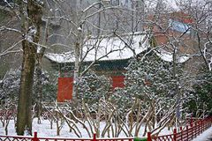 Snow Scenery in Zhengzhou People's Park. Zhengzhou People's Park is located on the west side of North 27th Road in the urban center. It was established royalty free stock photography