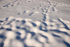 Snow sculpted by wind Stock Photography