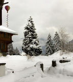 Snow season. Beautiful snow view of a typical swiss mountain house stock image