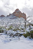 Snow in Sedona Royalty Free Stock Photos