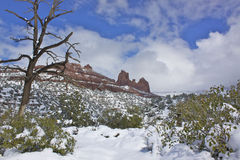 Snow in Sedona Stock Photos