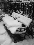Snow. The sense of peace that gives only the snow Royalty Free Stock Photo