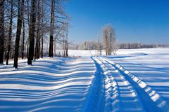 Snow and Shadow. Vehicle tracks lead through a snow covered winter scene royalty free stock image