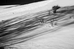 Snow and shadows Stock Photography