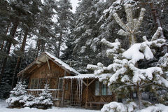 Snow shelter. In the bulgarian winter forest Royalty Free Stock Photos
