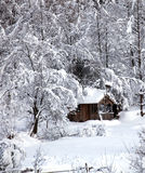 Snow shelter Royalty Free Stock Photos