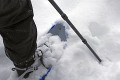 Snow shoe closeup Stock Photos