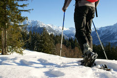 Snow shoe hiking Stock Images