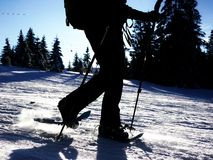 Snow shoe walking sillhouette Royalty Free Stock Image