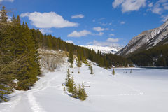 Snow Shoeing in Banff National Park Stock Images