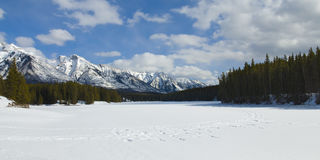 Snow Shoeing in Banff National Park Stock Image