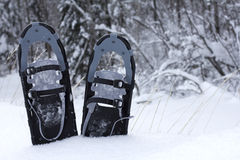 Snow shoes in the snow Royalty Free Stock Photo