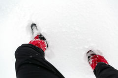 Snow shoes on a white snow during hiking in winter Royalty Free Stock Image