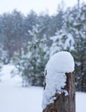 Snow on the side of a post. In winter royalty free stock image