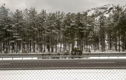Snow in the Sierra Nevada mountains Royalty Free Stock Photography