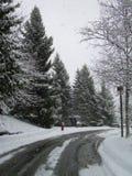 Snow at Simon Fraser Stock Photo