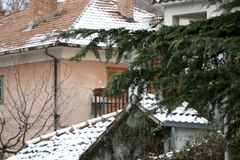 Snow in Sinj, Croatia. Pine tree in a garden, snow covering surrounding houses. Rural winter atmosphere in Sinj, Croatia. Selective royalty free stock photos